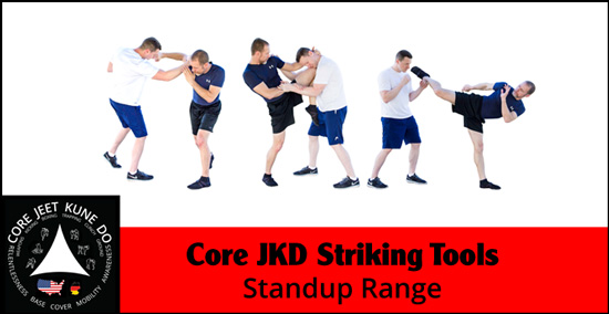 Core JKD striking tools video