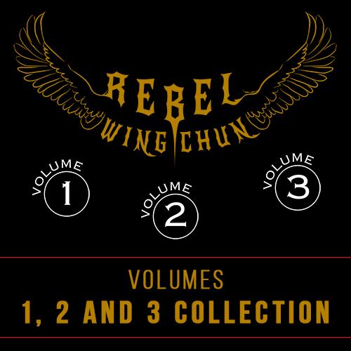 rebel wing cun