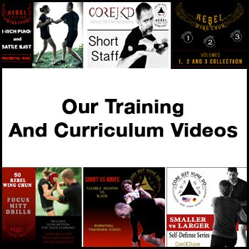 Core JKD curriculum videos